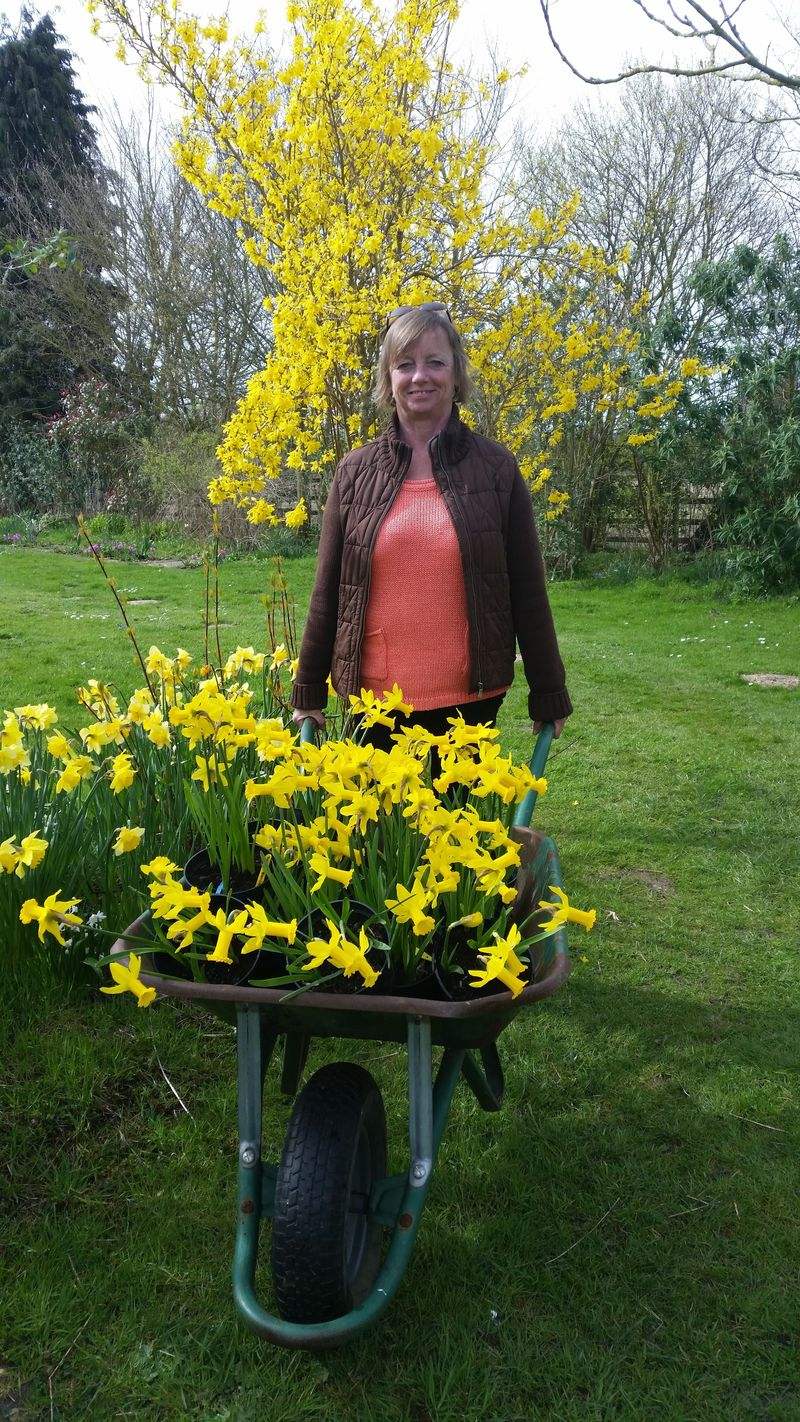 Deborah with the daffodils April 10 th 2016