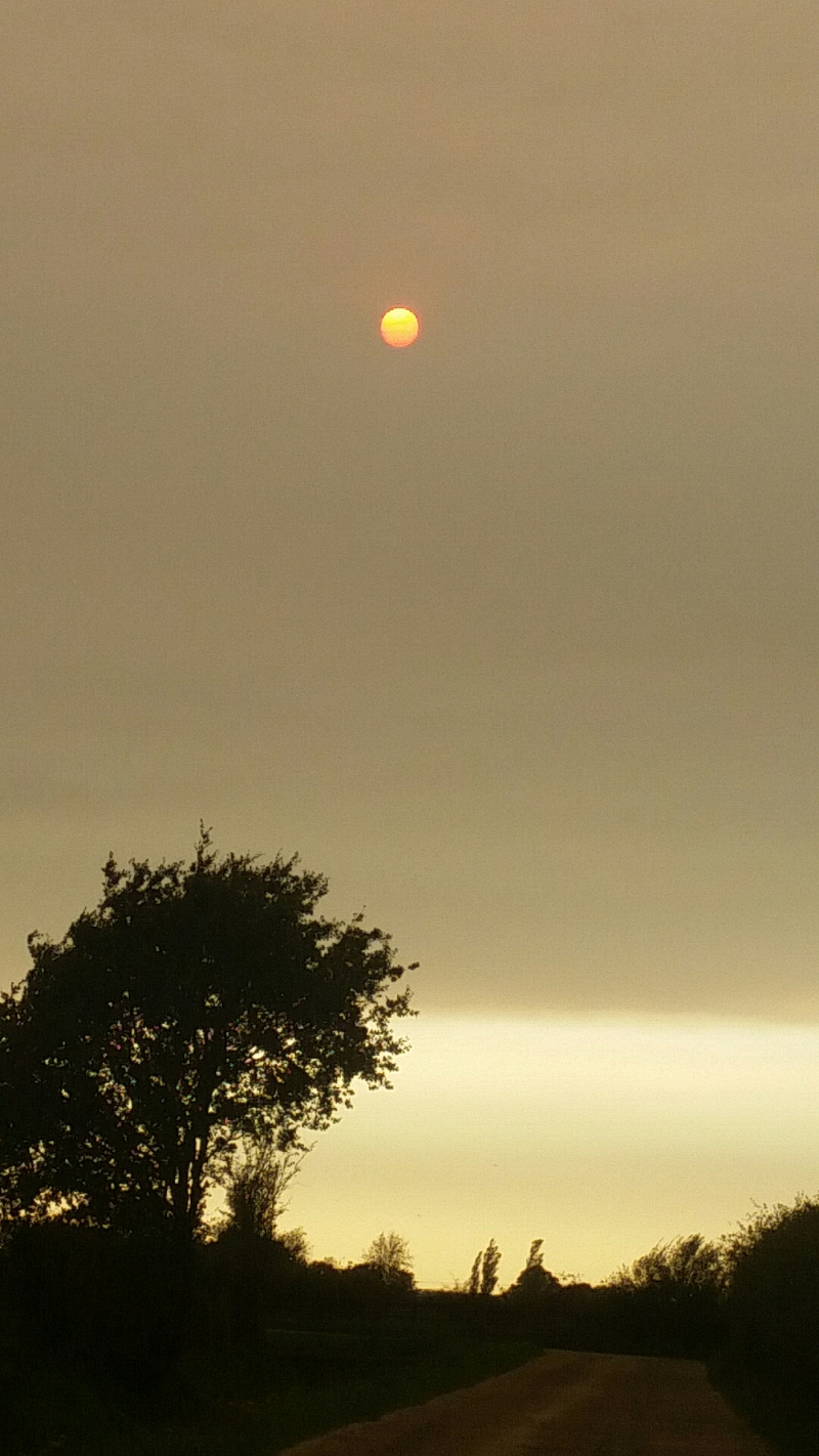 Orange sun on Mon 20171016